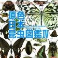 【07/8月・NEW】★原色シリーズ・原色日本昆虫図鑑IV